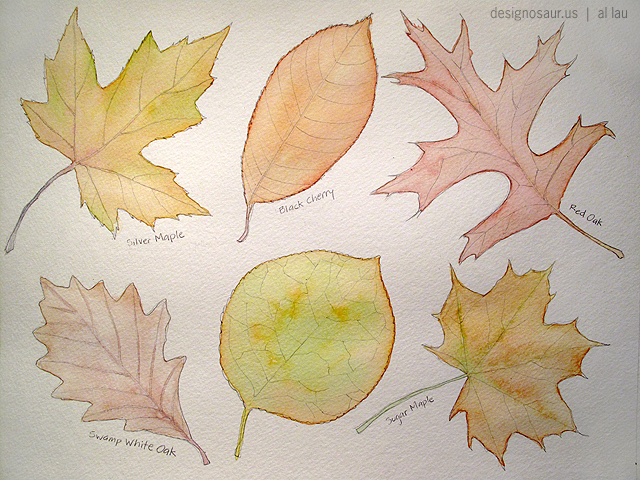 Fall Leaves Blog Designosaur Us