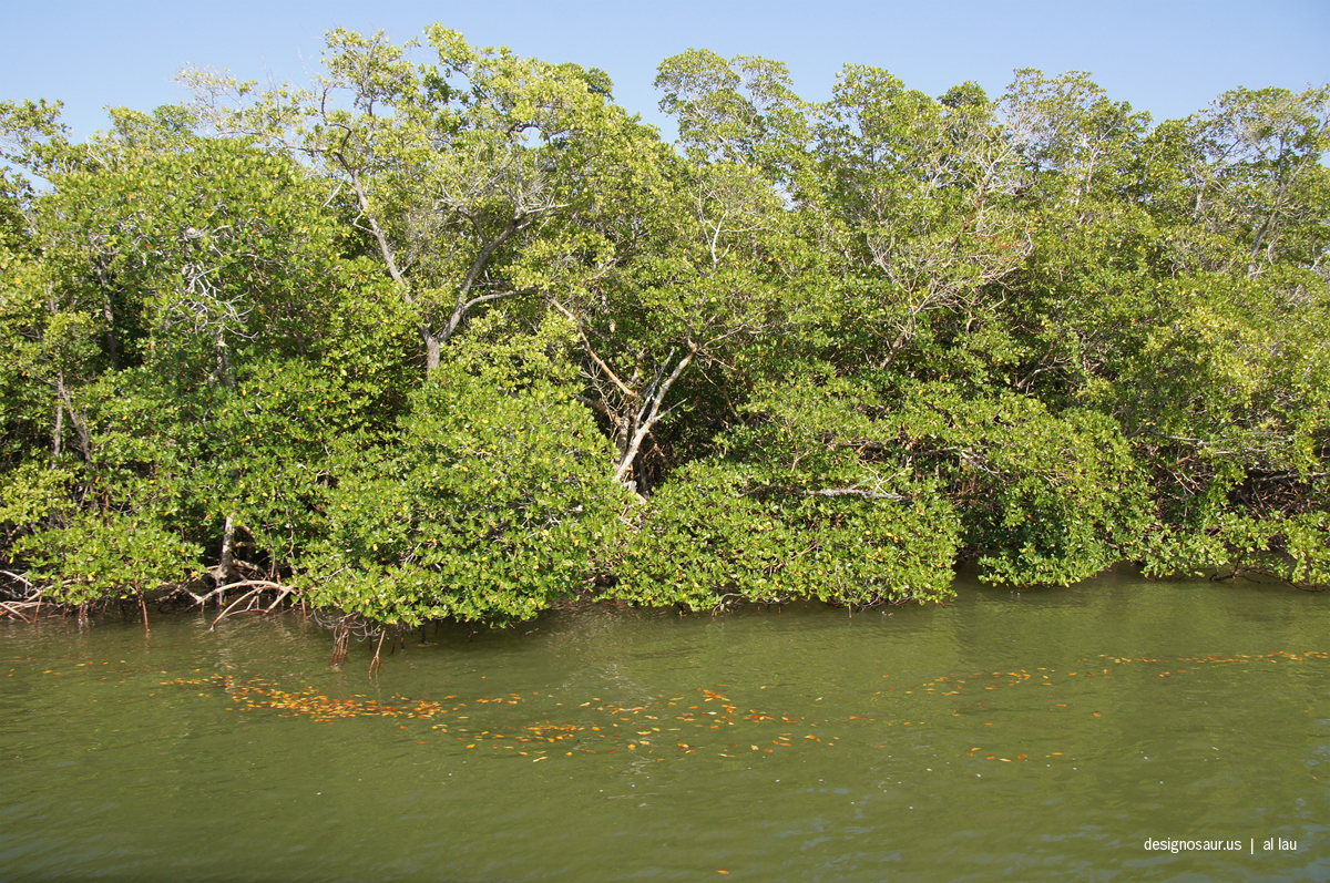 Giz Images Florida Post 3