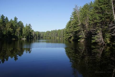 kushaqua lake