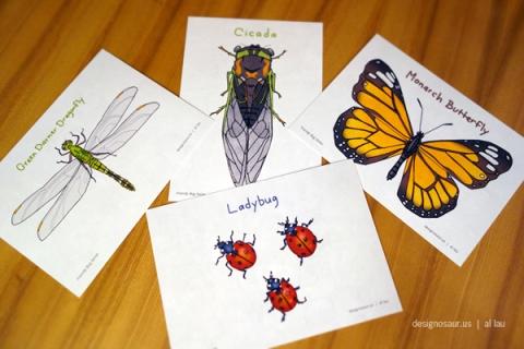 postcards_bugs