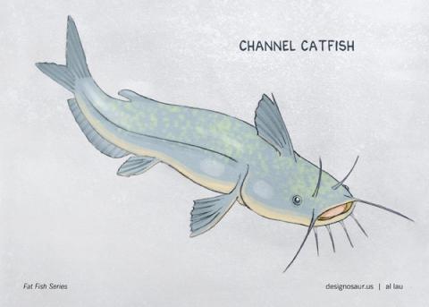 channel_catfish_by_al_lau