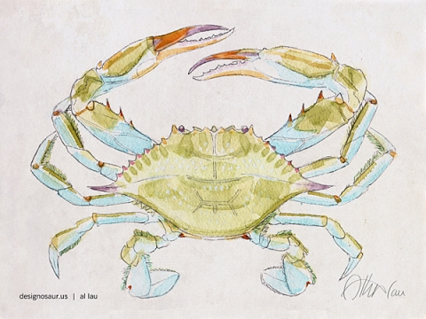 blue_crab_by_al_lau