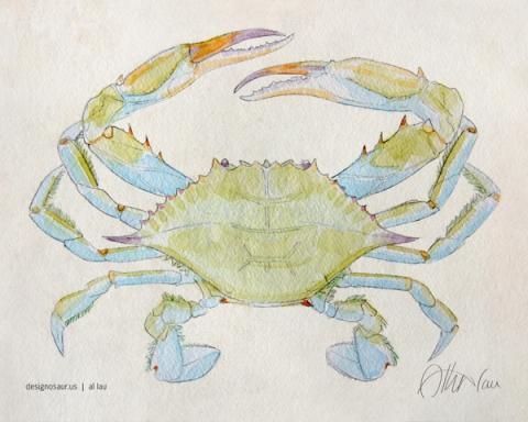blue crab v2