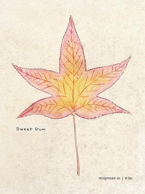leaf_sweet_gum_by_al_lau_sm