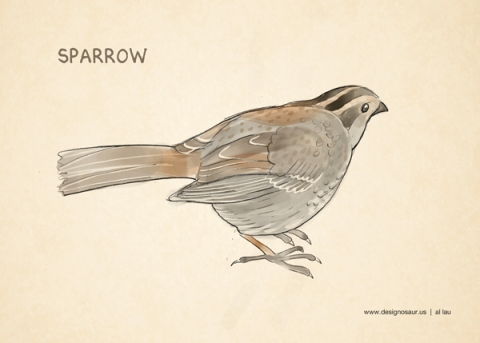 sparrow_by_al_lau