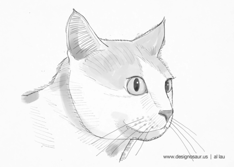 cat_face_by_al_lau