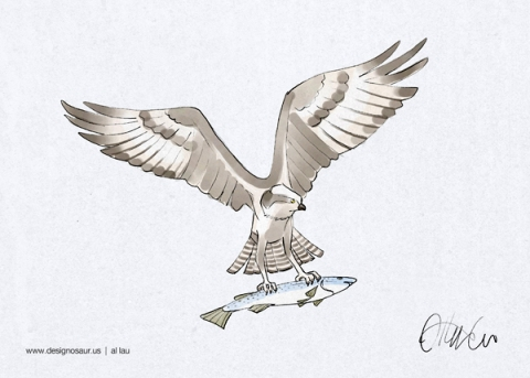 osprey_by_al_lau