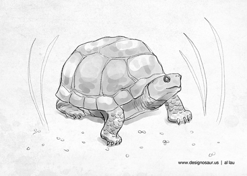 box_turtle_by_al_lau