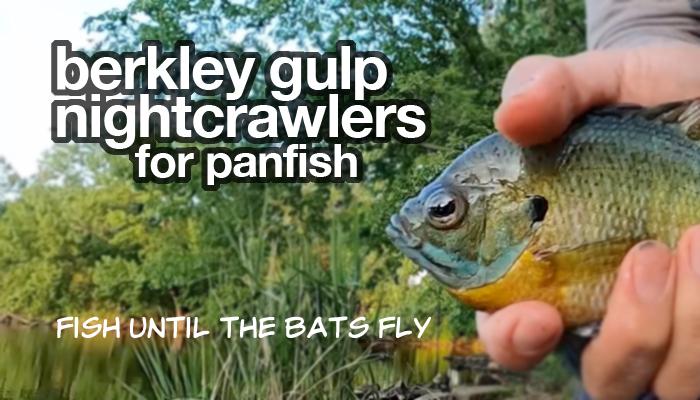 berkley_gulp_nightcrawler_for_panfish