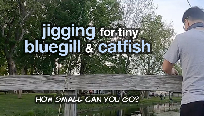 jigging for bluegill and catfish