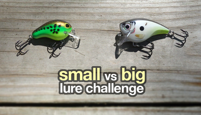 small vs big crankbait challenge