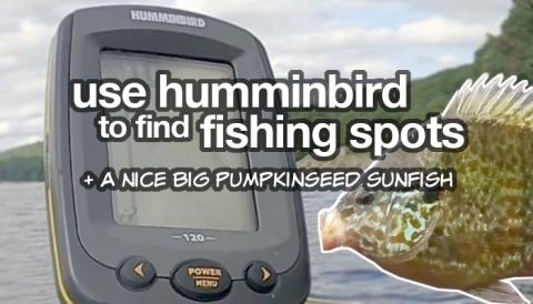 using hummingbird to find fishing spots